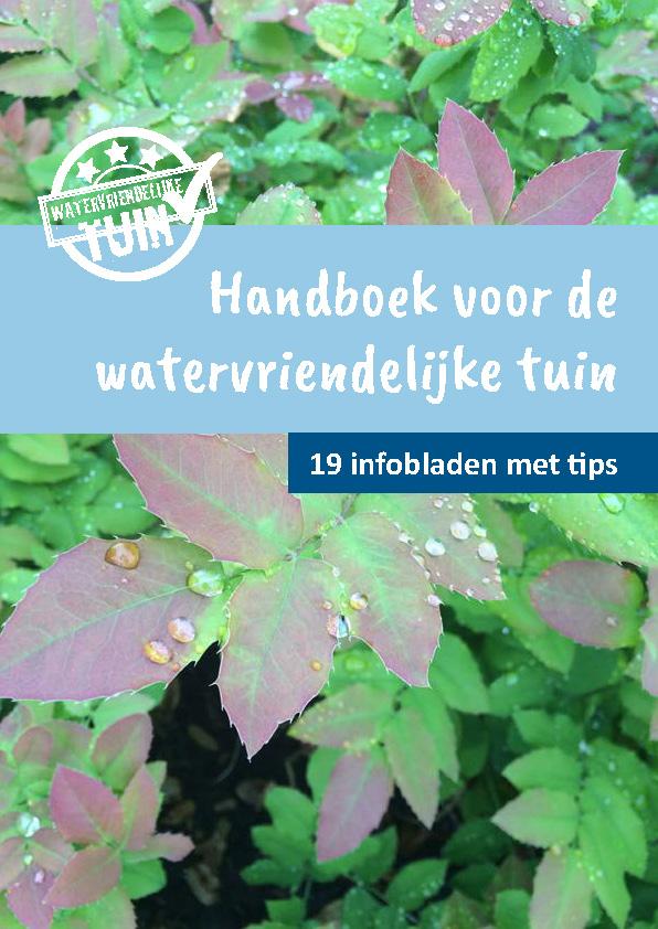 Een regenwatervijver in uw tuin
