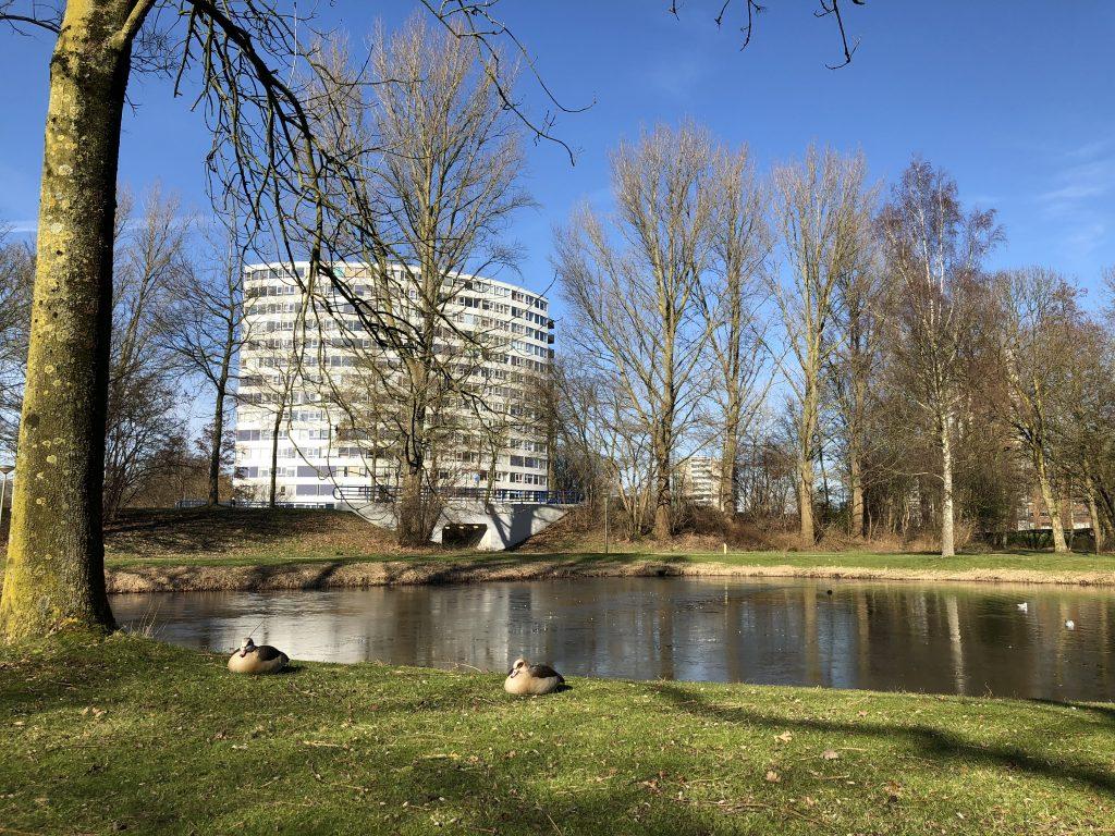 Inrichting Sterrenburgpark met bewoners
